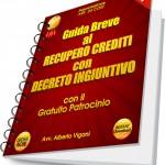 Guida al recupero crediti con decreto ingiuntivo